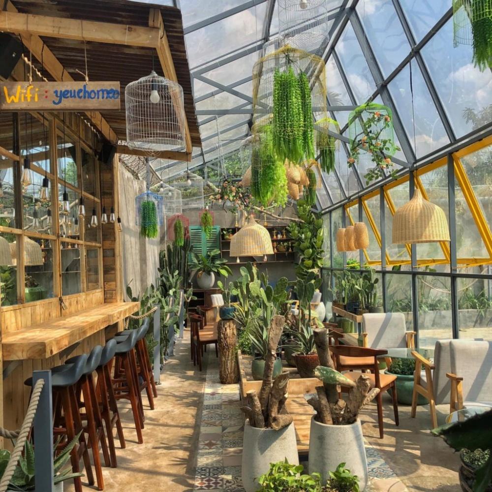 Royalland Pet Store Cafe Thu Cung Tai Binh Duong (2)