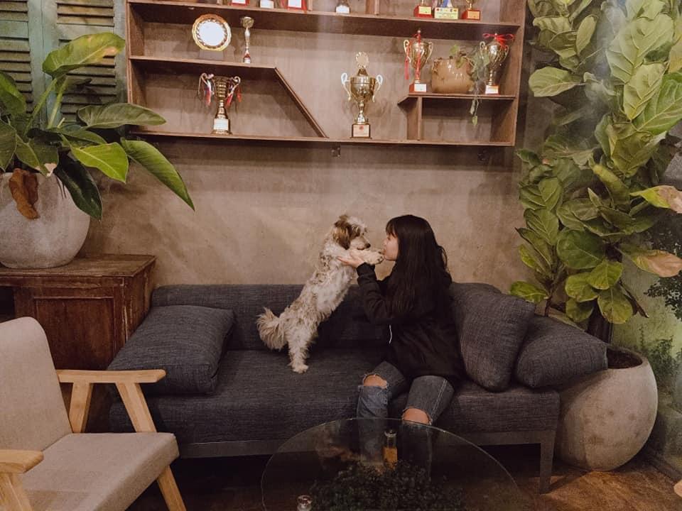 Royalland Pet Store Cafe Thu Cung Tai Binh Duong (5)