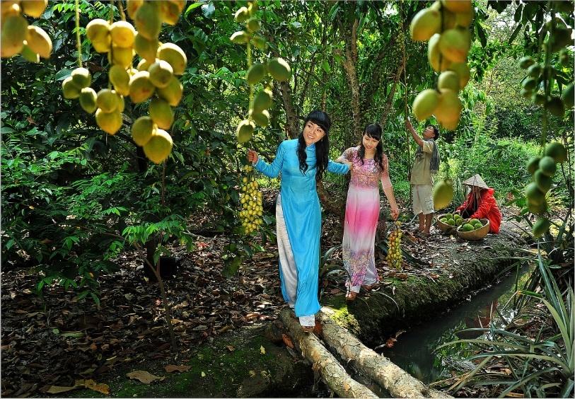 Vuon Trai Cay Lai Thieu Dia Diem Binh Duong (9)