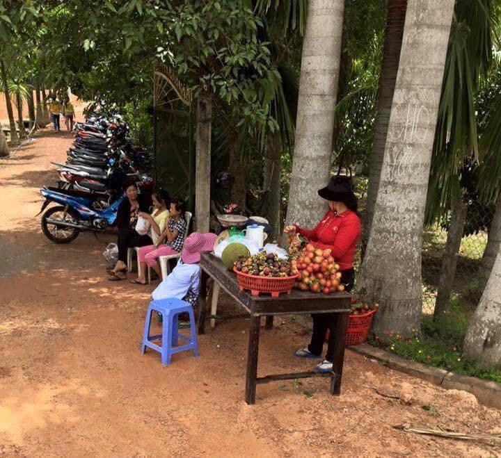 Vuon Trai Cay Chu Ba Cu10