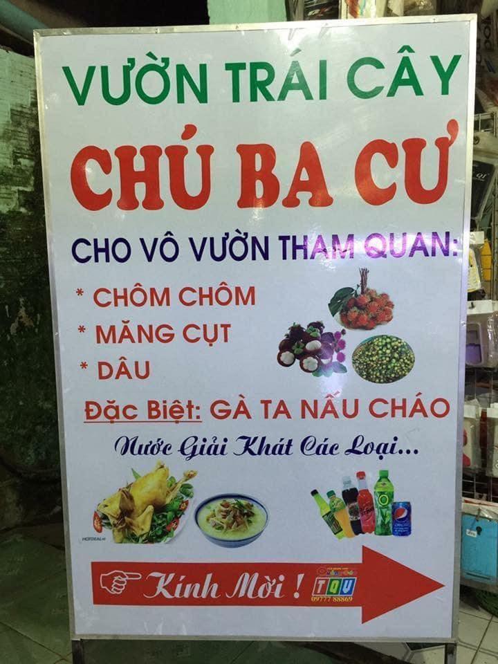 Vuon Trai Cay Chu Ba Cu13