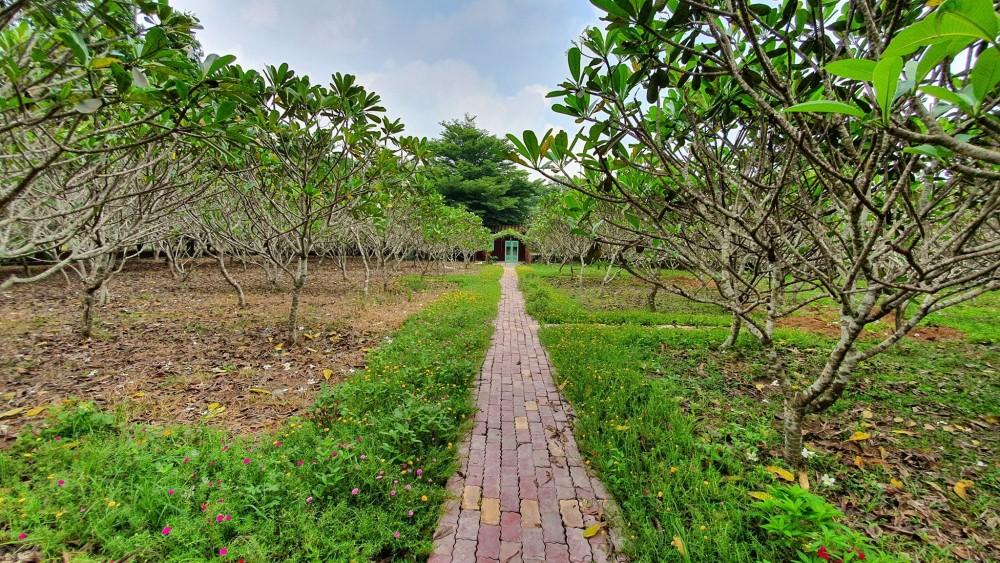 cafe Định Hoà Garden Bình Dương