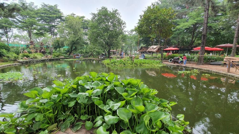 Dinh Hoa Garden 6