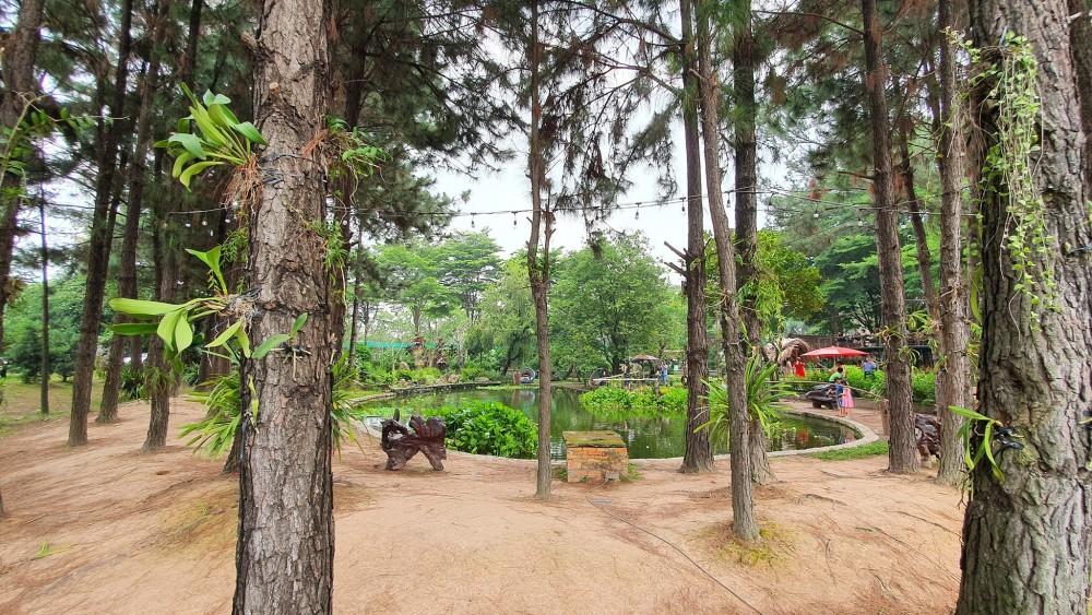 Dinh Hoa Garden 7