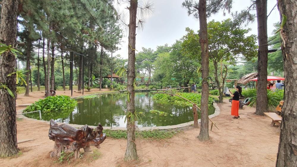 Dinh Hoa Garden 8