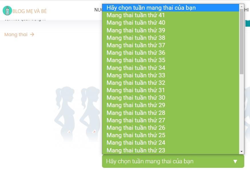 Hanh Trinh Mang Thai 1