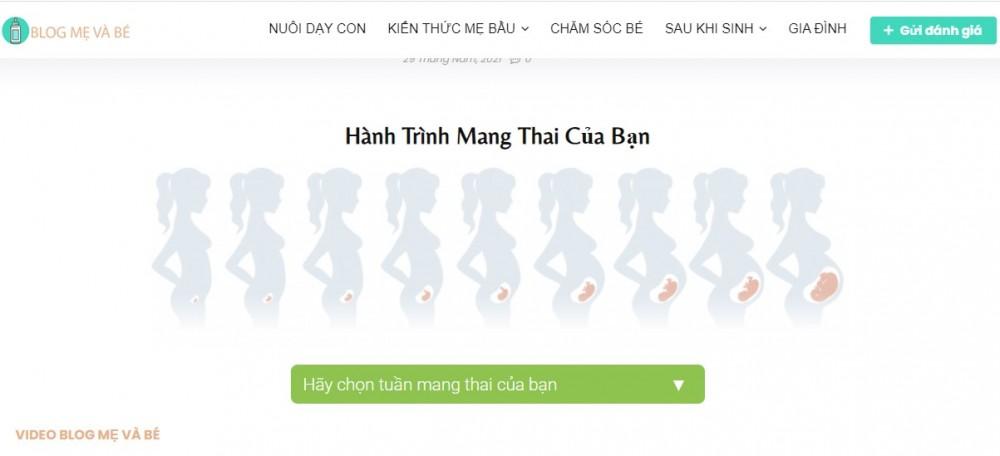 Hành Trinh Mang Thai