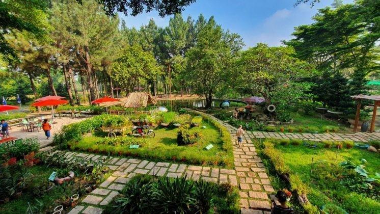 Dinh Hoa Garden